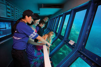 Discover in the underwater observatory