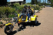 Hunter Valley Trike Tour